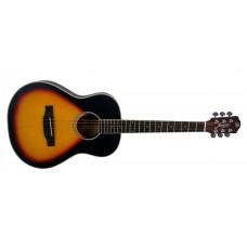 MORGAN W 110 3/4 Westerngitar TSB