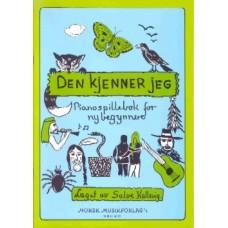Den kjenner jeg bok 1 - Salve Kallevig