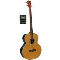 Richwood RB-60-EN acoustic bass guitar