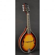 Richwood RMA-60-VS A-style mandolin